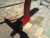 Massey ferguson ripper - Image 1