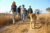 Avail Victoria Falls and Chobe packages at a nominal rate - Image 1